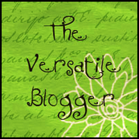 versatile-blogger-wordpress