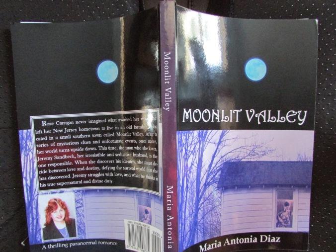 moonlit valley spread