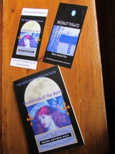 THE DINORAH CHRONICLES - RAMBLINGS OF THE SPIRIT - Book 1